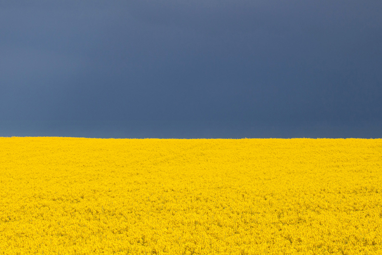 Cambridge black and white photo